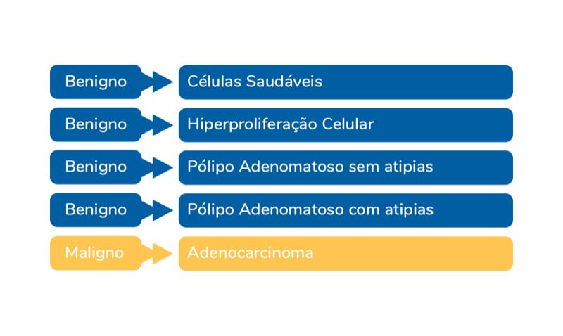 tabela cancer